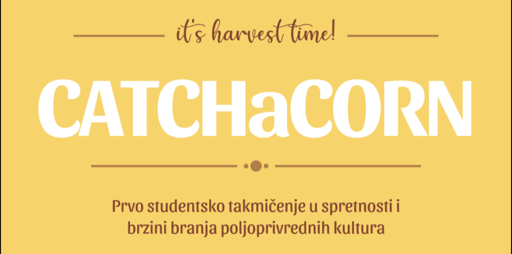 CATCHaCORN: the corn picking competition